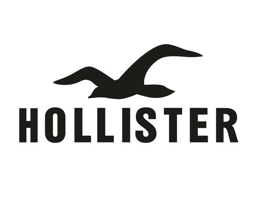 Hollister large